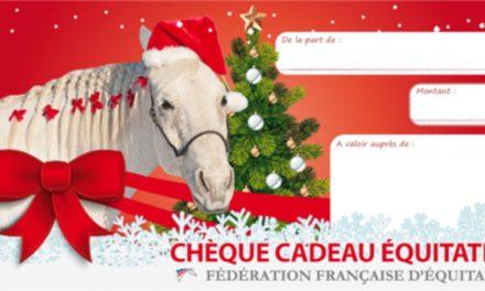 A Noël, offrez de l'équitation!