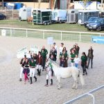 De supers résultats au Challenge Club Allier Jump ce WE !